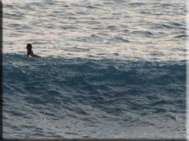 Surfer at Cupecoy
