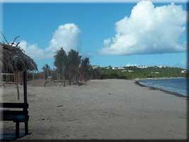 Nettle Beach